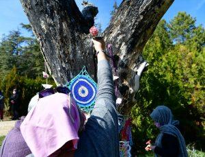 Isparta'da tarihi medrese avlusunda kuruyan ağaçlar el örgüleriyle renklendi