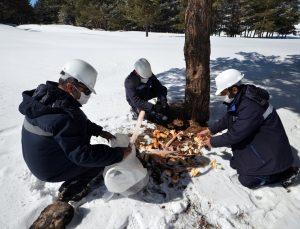 Kars'ta elektrik arıza ve sayaç okuma ekiplerinden yaban hayatına destek