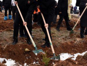 """Kırşehir'de """"Ahi Evran Kardeşlik Ormanı"""" oluşturuldu"""