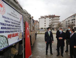 Tunceli'de çiftçilere dağıtılan 56 ton sertifikalı tohumlarla üretimin artırılması amaçlanıyor