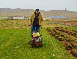 Afyonkarahisar'da köyde ailece ürettikleri rulo çimleri amatör spor kulüplerine ve belediyelere satıyorlar
