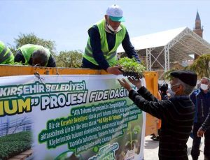 Kırşehir'de yerli tohumu teşvik için 120 bin sebze fidesi dağıtıldı