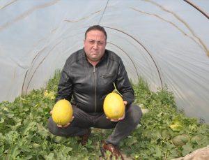 Mersin'de hasadına başlanan örtü altı kavunun kilogramı 10 liradan alıcı buluyor