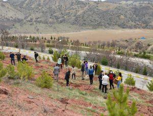 Tunceli'de kadına yönelik şiddetle mücadele kapsamında ''Mercan Hatıra Ormanı'' oluşturuldu