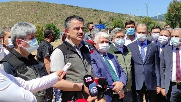 Tarım ve Orman Bakanı Bekir Pakdemirli, Hatay'da buğday hasadına katıldı:
