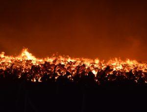 GÜNCELLEME – Afyonkarahisar'da biyokütle enerji santralinde yangın çıktı