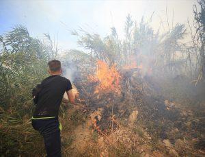 GÜNCELLEME – Antalya'da yerleşim yeri ve seralara yakın sazlık alanda çıkan yangın kontrol altına alındı