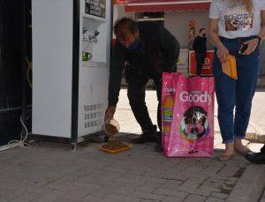 Banaz'da belediye ekipleri sokak hayvanlarını unutmuyor