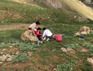 Van'da kayalıklardan düşerek yaralanan kişi ambulans helikopterle hastaneye kaldırıldı