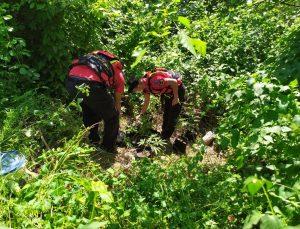 Jandarma, Ceyhan Nehri'ndeki adacığa ekilen kenevirleri drone ile tespit etti