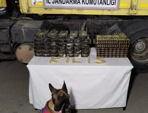 Kilis'te bir tırda 33 bin fişek ele geçirildi: 5 gözaltı
