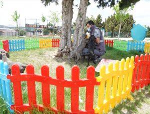 Konya'da 11 köpeğe şiddet uyguladığı belirlenen kadın hakkında yasal işlem başlatıldı