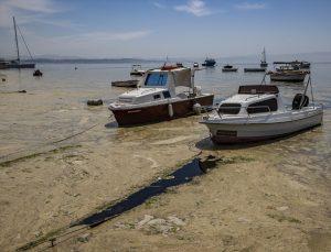Marmara Denizi'nin dibi de salya ile kaplanmaya başlandı