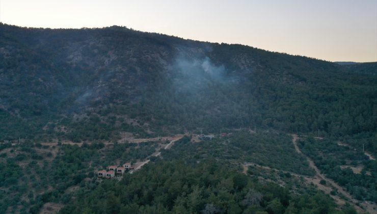 GÜNCELLEME 1 – Milas'ta ormanlık alandaki yangın kontrol altına alındı