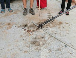 Muğla'da evin yatak odasında yakalanan yılan doğaya salındı