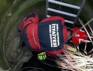 Muğla'da kuyuya düşen koyun itfaiye ekiplerince kurtarıldı