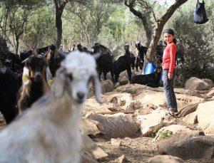 Muğla'da Yörük kızı Cennet okuma azmiyle takdir topluyor