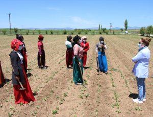 """Uşak Valisi Kocabıyık, tarlada çalışan mevsimlik işçileri ziyaret ederek """"EBA destek noktası"""" sözü verdi"""